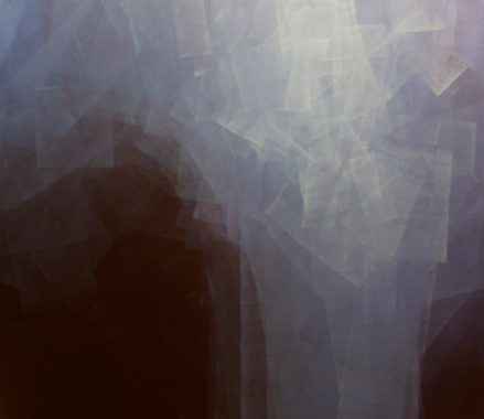 Art Spotlight: Janice Mason Steeves