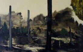 Art Spotlight: David D'Agostino