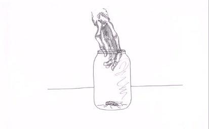Video: Journals