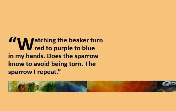 Literary Spotlight: Susan Tepper