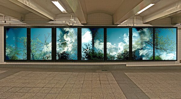 Leah Oates, Park Windows