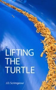 Cover of Lifting the Turtle by J.D. Scrimgeour