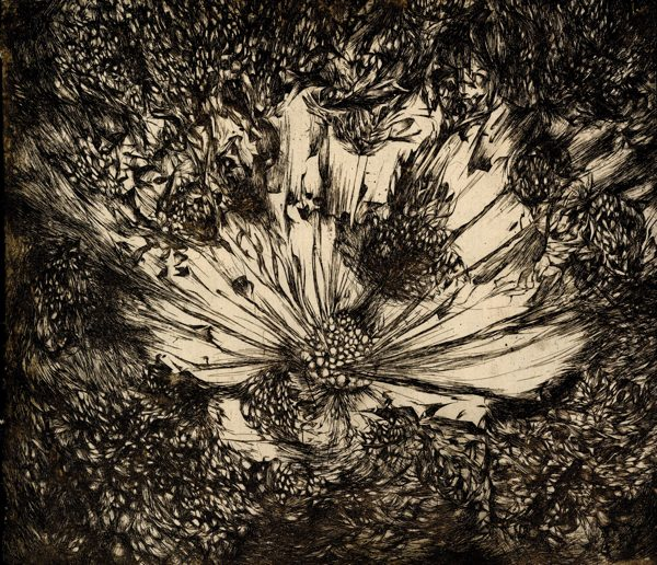 A black and white print of a flower and seeds on homemade paper